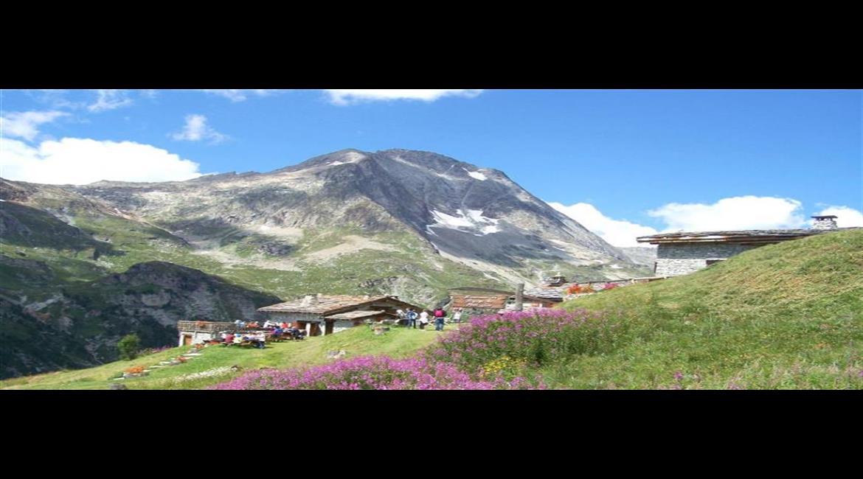 ALPES : La traversée des Alpes GR® 5 en vidéo