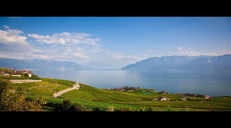 10 idées de randonnées autour du lac Léman en Suisse