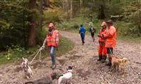 Du nouveau pour la chasse en Isère