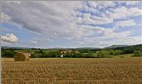 La Loire compte sur ses chemins de Grande Randonnée pour favoriser le tourisme
