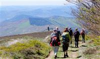 Les plus beaux itinéraires de randonnée des Cévennes